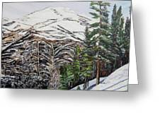Whispering Pines Greeting Card by Marilyn  McNish