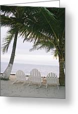 White Beach Chairs Line The Shore Greeting Card by Stephen Alvarez