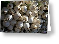 White Onions Greeting Card by Susan Herber