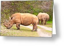 White Rhinoceros Greeting Card by Tom Gowanlock
