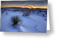 White Sands Sunset Greeting Card by Peter Tellone