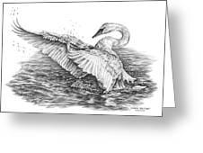 White Swan - Dreams Take Flight Greeting Card by Kelli Swan