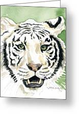 White Tiger Greeting Card by Mark Jennings