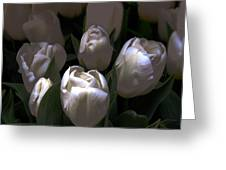 White Tulips Greeting Card by Dale   Ford