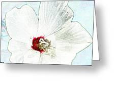 White Wildflower V Greeting Card by Debbie Portwood