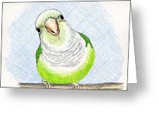 Who Me Greeting Card by Laurilee Taylor