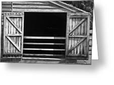 Who Opened The Barn Door Greeting Card by Teresa Mucha
