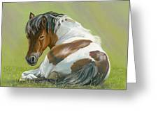Who You Lookin At Greeting Card by Bev Lewis