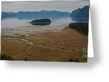 Wild Alaska Coast Greeting Card by Mike Reid