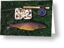 Wild Brown Trout And Fishing Rod Greeting Card by Axiom Photographic