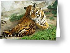 Wild Content Greeting Card by Sandra Chase