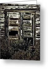 Wild Doors Greeting Card by JC Photography and Art