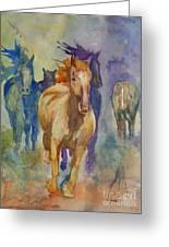 Wild Horses Greeting Card by Gretchen Bjornson