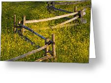 Wildflowers And A Wooden Fence At Greeting Card by David Chapman