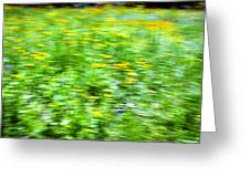 Wildflowers and Wind 2 Greeting Card by Skip Nall