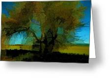 Willow Tree Greeting Card by Bonnie Bruno