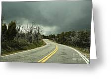 Winding Two Lane Road Greeting Card by Ned Frisk