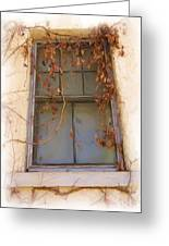Window In Time Greeting Card by FeVa  Fotos