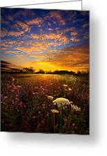 Windsong Greeting Card by Phil Koch