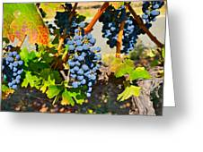Wine Country Greeting Card by Gloria Wannow