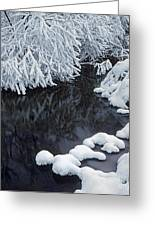 Winter Brook Greeting Card by Elena Filatova