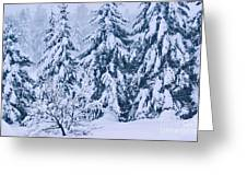 Winter Coat Greeting Card by Aimelle