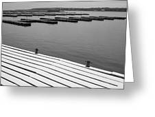 Winter Dock Greeting Card by Merv Scoble