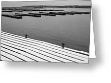 Winter Dock Greeting Card by Merv Scoble
