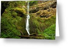 Winter Falls Greeting Card by Adam Jewell