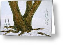 Winter In Brooklyn Botanic Garden Greeting Card by Anna Folkartanna Maciejewska-Dyba