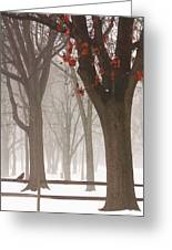 Winter In The Woods Greeting Card by Tom York Images