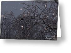 Winter Night Greeting Card by Sacred  Muse
