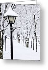 Winter Park Greeting Card by Elena Elisseeva