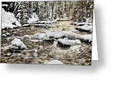 Winter River Greeting Card by Leland D Howard