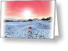 Winter Rose Greeting Card by Harald Dastis