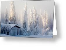 Winter Scene Greeting Card by Kati Molin