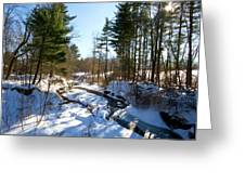 Winter Stream  Greeting Card by Tim  Fitzwater