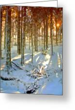 Winter Sunset Greeting Card by Rod Jones