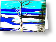 Winter Tree Greeting Card by Paula Brown