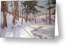 Winter Woodland With A Stream Greeting Card by James MacLaren