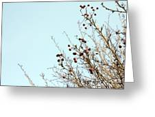 Winter's End Greeting Card by Cindy Garber Iverson