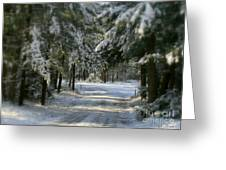 Winter's Tranquility Greeting Card by Debra Straub