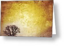Wintery Road Sunrise Greeting Card by Jill Battaglia