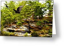 Wisconsin River Dwellers Greeting Card by Sotiri Catemis