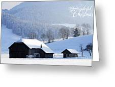 Wishing You A Wonderful Christmas Greeting Card by Sabine Jacobs