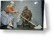 Woman Communicates With Orangutan Greeting Card by B. A. Stewart And David S. Boyer