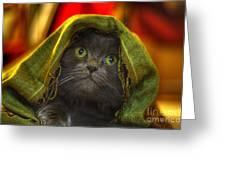 Wonder Greeting Card by Joann Vitali