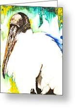 Wood Stork Greeting Card by Anthony Burks Sr