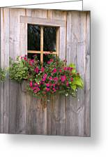 Wooden Shed With A Flower Box Under The Greeting Card by Michael Interisano