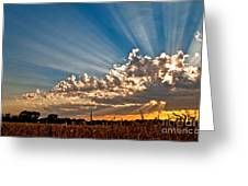Wow Moment Greeting Card by Brian Duram